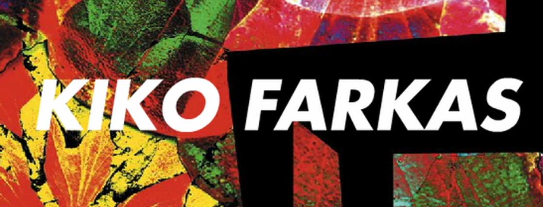 Encontro na Fronteira #10 Kiko Farkas